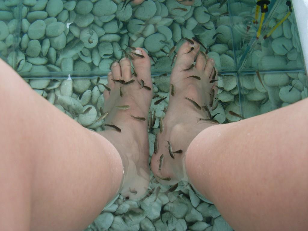 Śmierdzące stopy zasypka