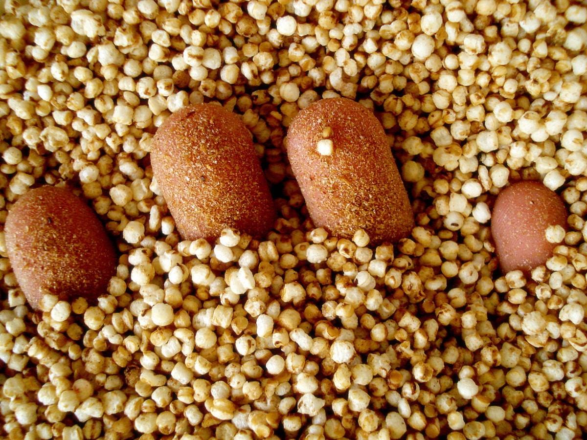 Kasza quinua cena