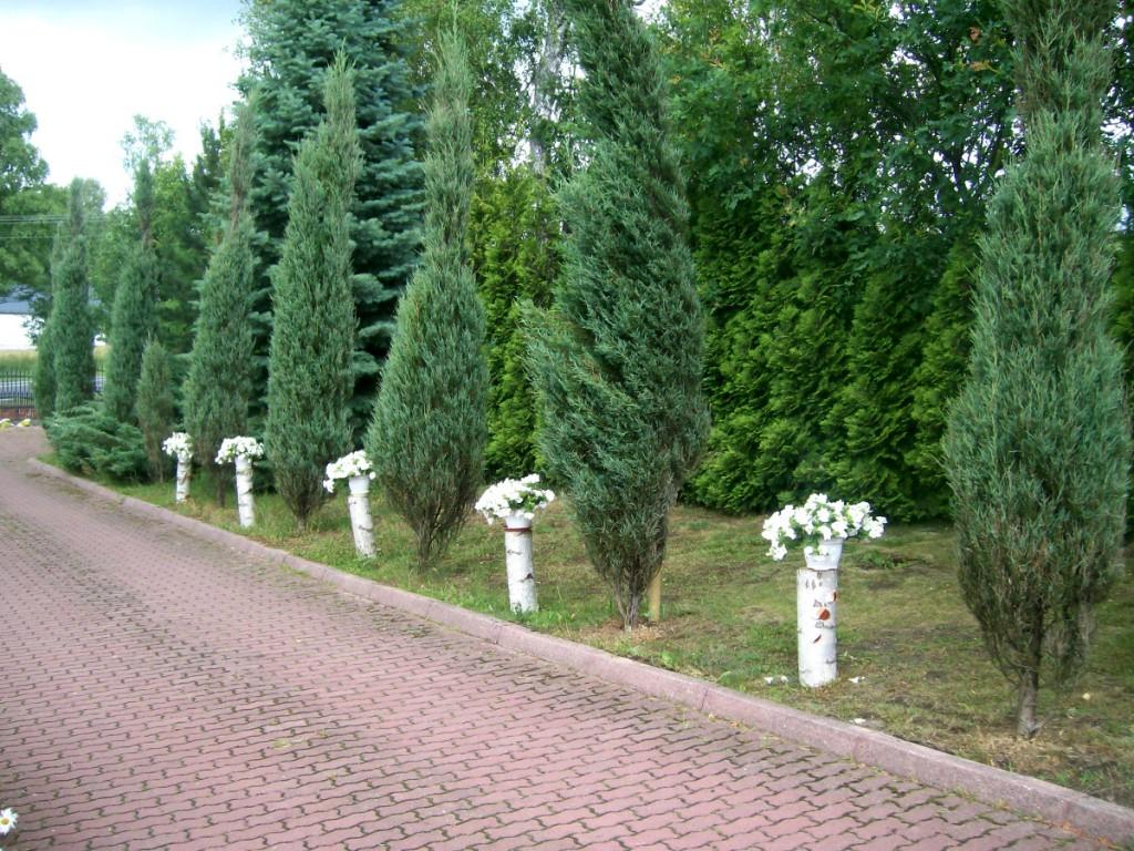 Dekoracja domu na wesele zdjęcia