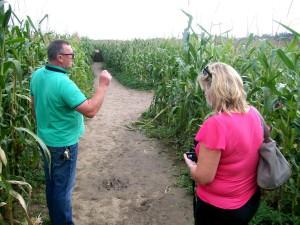Labirynt z kukurydzy w Kurozwękach