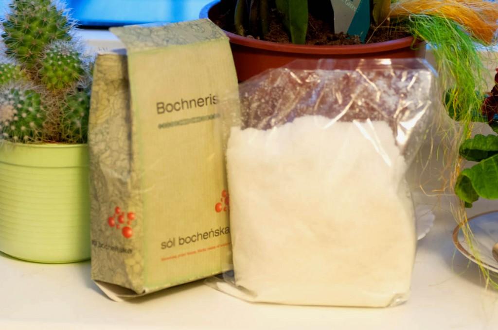Sól Bocheńska Bochneris
